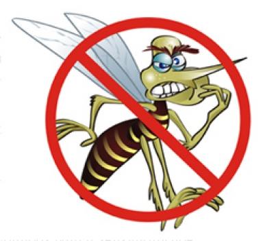 como-combater-a-dengue