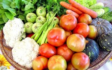 Cuidados de Higiene na Prevenção de Doenças Causadas pelos Alimentos