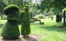 Jardins Japoneses – Esculturas de Grama que Imitam Cenas do Dia a dia