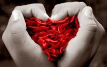 Se Apaixonar Faz Bem à Saúde – Amor, seus Benefícios ao Corpo e a Alma