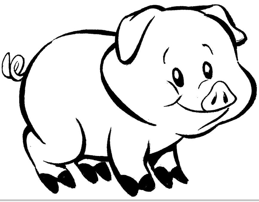 Desenho Para Colorir Porquinho Desenhos Para Colorir De Animais Le  O