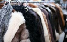 Roupas e Acessórios com Pelos e Peles Sintéticos: Moda Inverno, Arrase