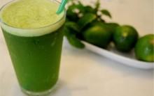 Receita de Suco Antioxidante e Emagrecedor Ótimo a Saúde e Bem-Estar