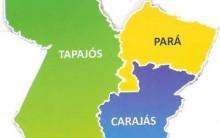 Carajá e Tapajós – Tudo sobre os Novos Estados Brasileiros, Plebiscito