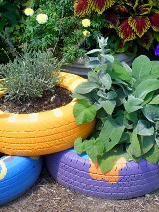 horta organica3   Como fazer Horta Reciclando Pneus usados Passo a Passo. Agro ecologia