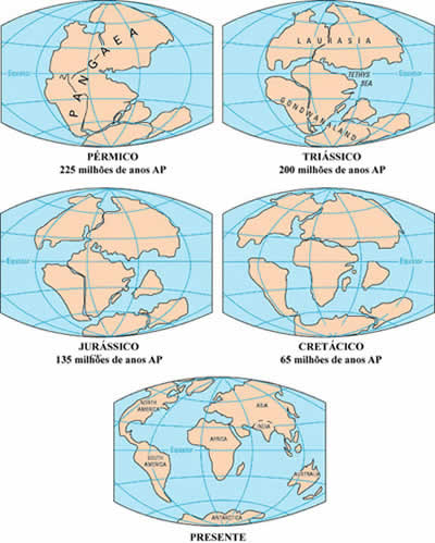 deriva continental teoria Teoria da Deriva Continental: Wegener, Resumo para Estudo, Video, Foto