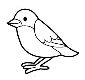 passaro pintar Desenhos para Colorir de Pássaros: Melhores Aves, Imagens para Pintar