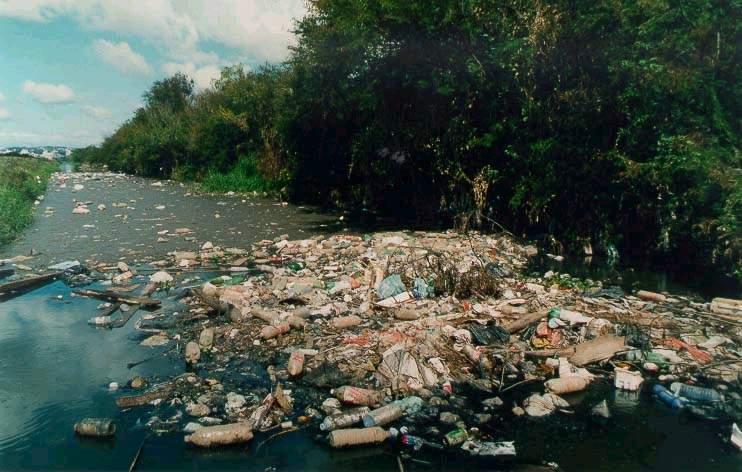 rio cai Os 10 Rios mais Poluídos do Brasil: Lista com Nomes dos Sujos, Fotos