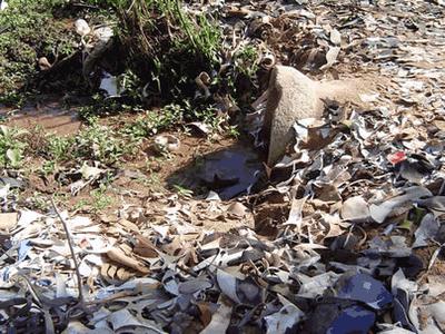 rio dos sinos Os 10 Rios mais Poluídos do Brasil: Lista com Nomes dos Sujos, Fotos
