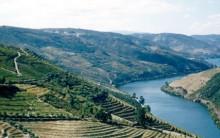 Vale do Douro em Portugal: Viagem, Hotéis, Vinhos, Paisagem e mais