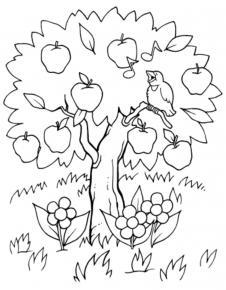 arvore Desenhos para Colorir de Árvore: Imagens para Imprimir e Pintar Grátis