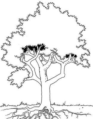 arvores colorir Desenhos para Colorir de Árvore: Imagens para Imprimir e Pintar Grátis