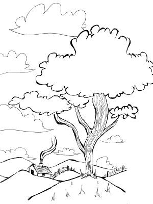 colorir1 Desenhos para Colorir de Árvore: Imagens para Imprimir e Pintar Grátis