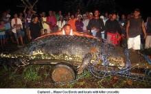 Crocodilo Gigante é Encontrado nas Filipinas: Animal Mede 6,5 m. Fotos