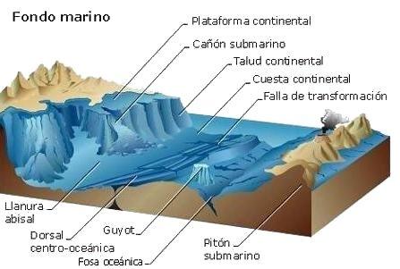relevo do fundo do mar Relevo Submarino: Resumo da Estrutura, Forma, Tipos e Características
