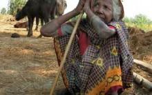 Tudo sobre Dálits: Sistema de Castas da Índia, Intocáveis e Funções