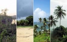 Melhores Fotos da Guiana Francesa: Imagens, Paisagens e Praias do País