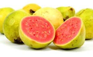 goiaba Significado das Frutas: Simbolismo e Característica dos Frutos, Origem