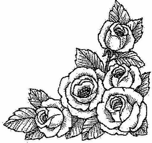 Desenhos de Rosa para Colorir: Lindas Imagens para Pintar, Flores ...