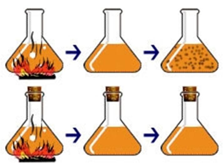 caldo Teoria da Biogênese: Origem de Seres Vivos, Louis Pasteur, Experimento