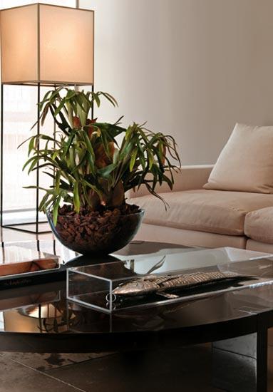 casa claudia outubro especies plantas casa 012 Decoração de Interiores  Casa com Flores Naturais é Moderno e Elegante