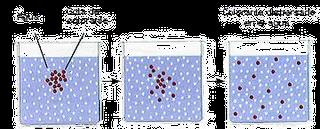 difusao simples Tudo sobre a Difusão Simples: Resumo Transporte do Soluto por Membrana