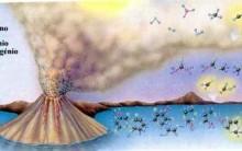 Hipótese Heterotrófica da Origem da Vida: Fermentação, Fotossíntese
