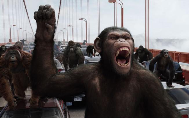 planeta dos macacos Chimpanzés como Cobaias: Crueldade ou Necessidade? Veja os Argumentos