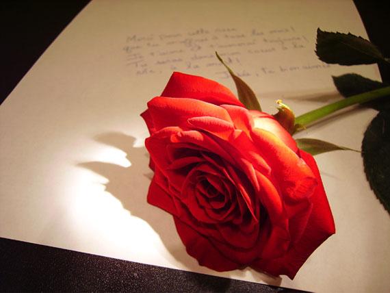 Imágenes de amor bonitas para celular