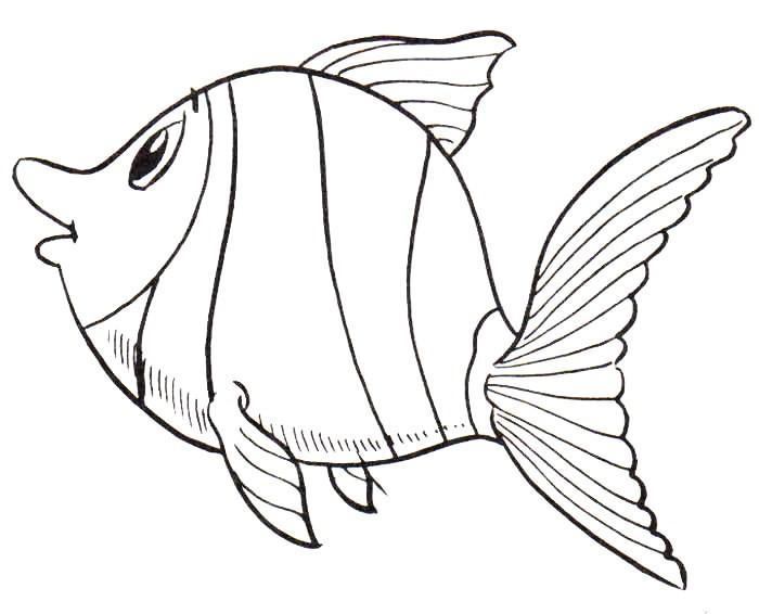 peixe imagem pintar Desenhos de Animais Fofos para Colorir: Imagens para Imprimir e Pintar