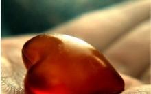 Órgãos que são Doados em Vida Como ser um Doador de Fígado, Rim e mais