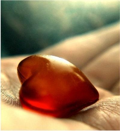 doacao de orgaos Órgãos que são Doados em Vida Como ser um Doador de Fígado, Rim e mais