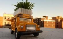 Biobus: Ônibus com Jardim no Teto contra Ilhas de Calor, Absorve CO2