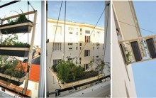 Veneziana de Plantas: Suporte para Janela Verde em Apartamentos, Fotos