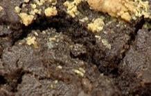 Receita de Cookie de Paçoca da Ana Maria Braga: Mais Você 05/07/2012