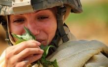 Alistamento Militar Feminino: Inscrição, Concursos, Cargos na FAB, Site