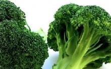 Benefícios Brócolis à Saúde – Emagrece, Vitaminas, Nutrientes