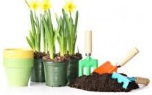Adubo Orgânico: Como Fazer Adubo em Casa, Composto Orgânico Caseiro