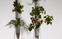 Horta vertical Sem Terra – Hidroponia Dicas de como Fazer em Casa