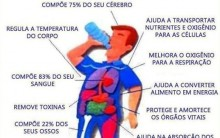 Como Manter o Corpo Hidratado: Dicas Importante para Manter Boa Saúde