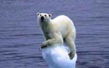 Protocolo de Kyoto: Países que Mais Emitem Gases, Crédito de Carbono