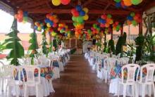 Festa Havaiana – Decoração para Aniversário de 15 anos com tema Hawaí