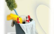 Limpeza Correta – Como acabar com as bactérias da Cozinha e Banheiro