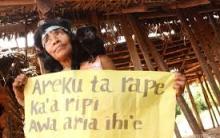 Conflitos Awá-Guajá: Invasões de Terras Indígenas e Ação do Greenpeace