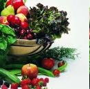 Dieta Detox – Dicas de Alimentos de Ajudam Desintoxicar após Exageros