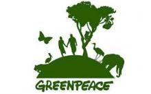 Como Trabalhar no Greenpeace: Vagas de Emprego e Como Mandar Currículo