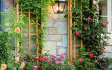 Flores na Varanda Dicas de Decoração com Plantas em Sacada Apartamento