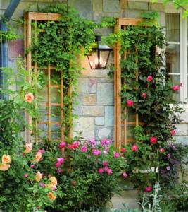 flores-na-varanda-como-cultivar-plantas-na-sacada-de-prédios
