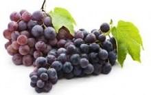 Farinha de Uva Ajuda Emagrecer – Vitaminas e Benefícios
