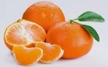 Mexerica Emagrece – Benefícios e Vitaminas da Fruta